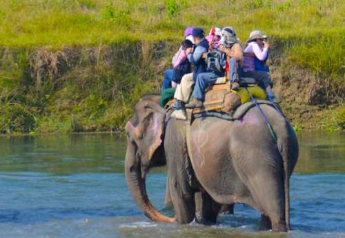 Chitwan Tour 2 Nights 3 Days
